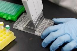 Ученые научились определять, от кого из родителей унаследован ген