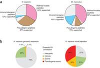 Кодирующие белки мусорные гены могут быть связаны с раком