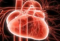 Ученые разрабатывают «вечный» кардиостимулятор