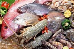 Морепродукты опасны для почек