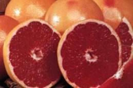 Грейпфрутовый сок поможет остановить рак