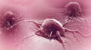В МКБ-11 не будет диагнозов, связанных с половым развитием и ориентацией