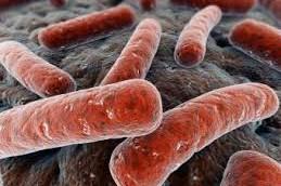 ВОЗ недооценил распространенность туберкулеза у детей