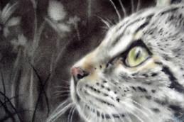 Симптомы колита уберет обыкновенная кошка