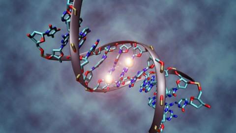 Генетические изменения могут вызвать рак