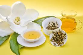 Как зеленый чай предупреждает рак