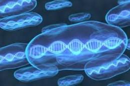 Эпигенетические изменения в ДНК провоцируют рак