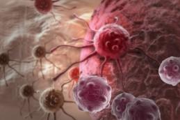 Факторы,вызывающие рак