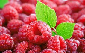 Лечебные свойства малины в лечении рака