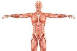 Опухоли мягких тканей