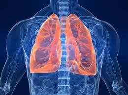 Риск развития кардиальных осложнений у больных местно-распространенным раком легкого, получивших лучевую терапию