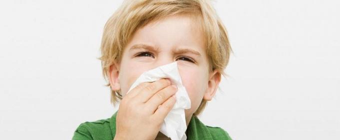 Профилактика и лечение аллергического ринита