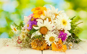 Доставка цветов в Сочи «FRESH»