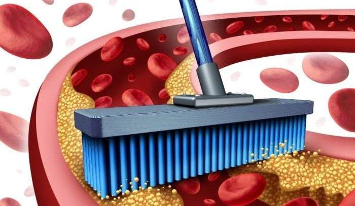 Назван простой, но эффективный рецепт очистки крови и лимфы