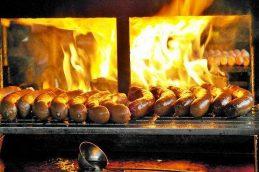 Консервированное красное мясо повышает риск рака кишечника
