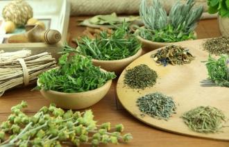 Полезные сборы трав от рака: какие травы пить?