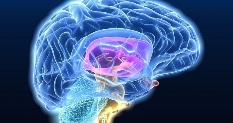 Онкология – БИЧ XXI века