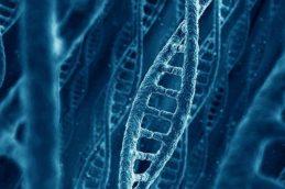 Новое лекарство от рака рекордно продлило жизнь больным