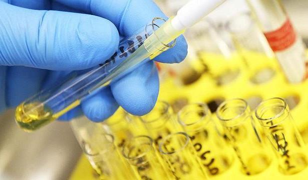 Найден способ победить бессмертные клетки рака