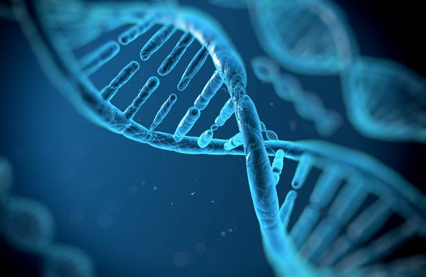 Загадка ДНК: какие лекарства спасут людей от рака