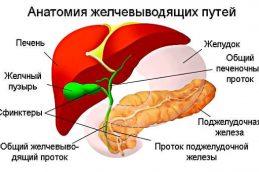 Заболевания желчевыводящих путей