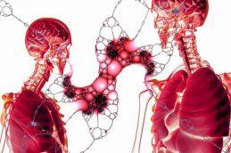 Выявлять рак легких по крови научились ученые Новосибирска