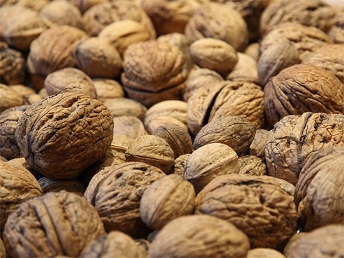 Грецкие орехи вдвое снижают риск тяжелой болезни