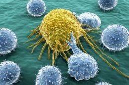 Найдено средство против особо опасных форм рака