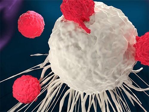 Прорыв в терапии рака