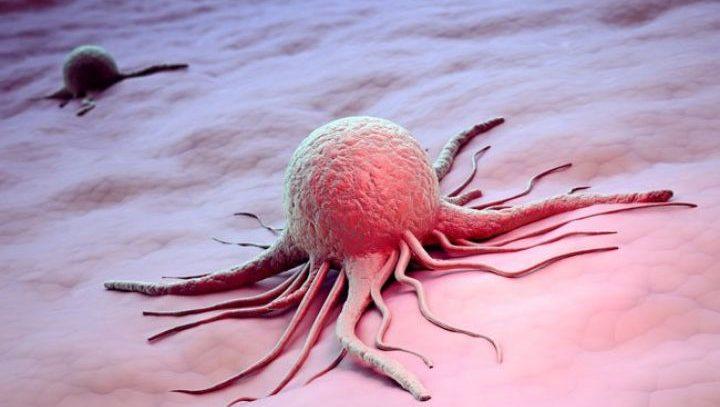 Онколог назвал продукты, провоцирующие раковые болезни