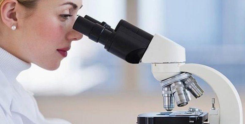 Обнаружен ген NSD2 – активатор рака простаты