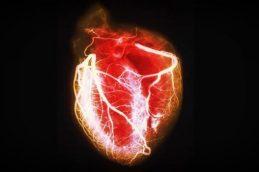Редкая и опасная опухоль в сердце: при этих симптомах нужно обращаться к врачу