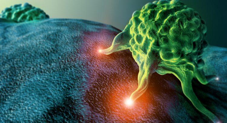 Айкидо в иммунотерапии рака: силу опухолей используют для победы над ними