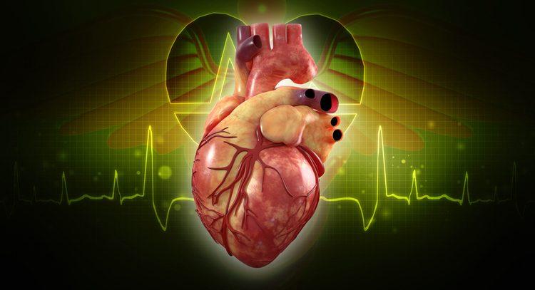 Наше тело справляется с отказом органов лучше, чем мы думали