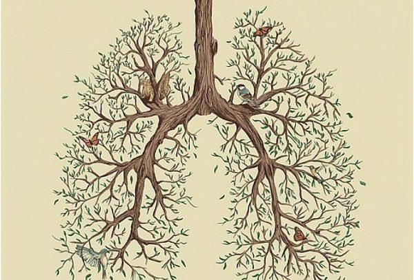 Туберкулез: меры профилактики