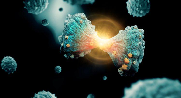 Найден способ убивать раковые клетки, не трогая здоровые