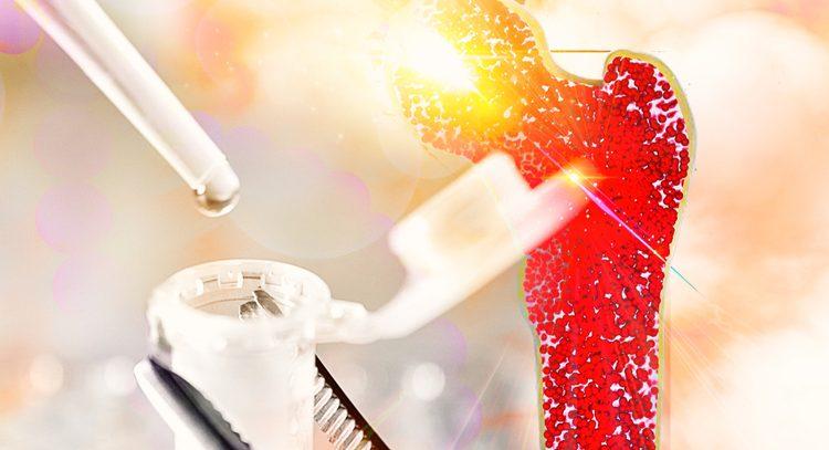 Наши костные клетки способны подавлять рак