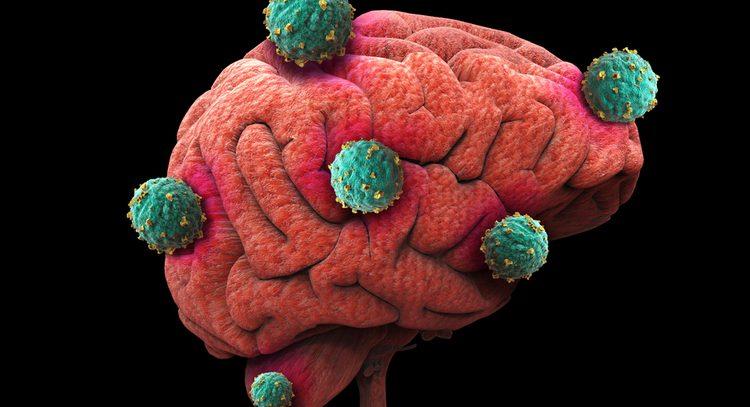 Антигистаминный препарат помог победить рак мозга