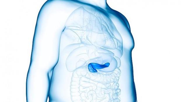 Ожирение повышает риск развития рака поджелудочной железы