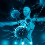 Заболевание и излечение онкологических заболеваний как следствие работы психологической системы человека