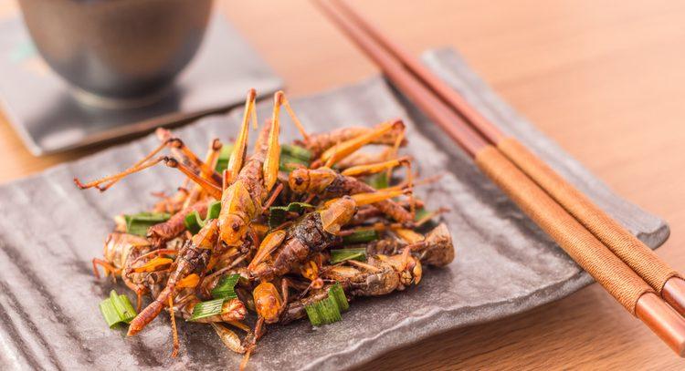 Поедание кузнечиков и муравьев защитит от рака