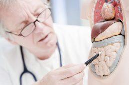Что лечит гастроэнтеролог и когда к нему стоит обращаться?