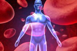 Малоподвижный образ жизни грозит раком почек
