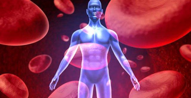 Гемофилия: причины, диагностика и лечение