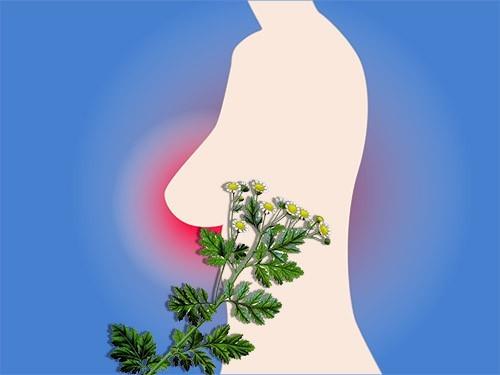 Каждая шестая женщина с раком молочной железы имеет нетипичные симптомы заболевания
