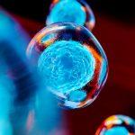 Как повысить уровень эстрадиола