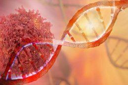 Как пищевые привычки влияют на заболеваемость раком?