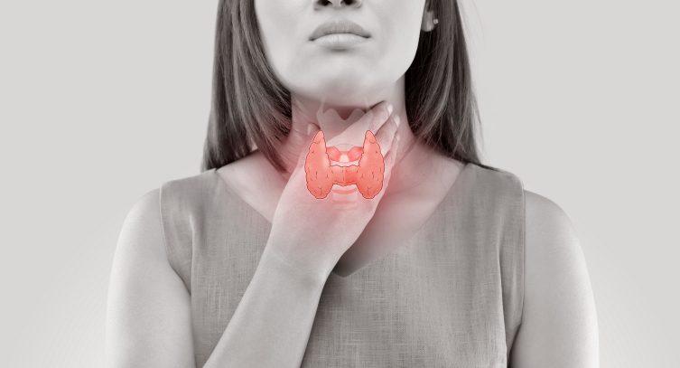 Кто подвержен гормональным заболеваниям щитовидной железы и как их лечат?
