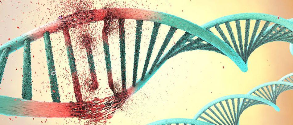 ДНК и онкологи