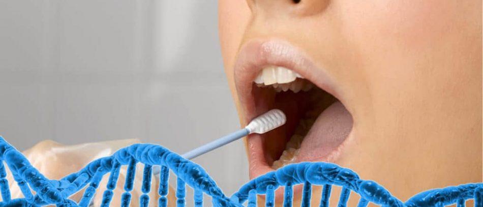 Что такое ДНК тестирование